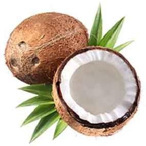 GoldSorb 4500 активированный уголь для золотодобывающей промышленности кокосовый